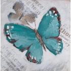 Schilderij Butterfly shadow 100x100cm