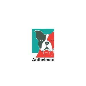 Anthelmex