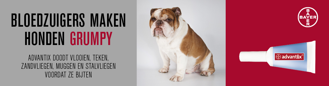 Advantix Hond Spot On Tegen Vlooien en Teken bij uw hond