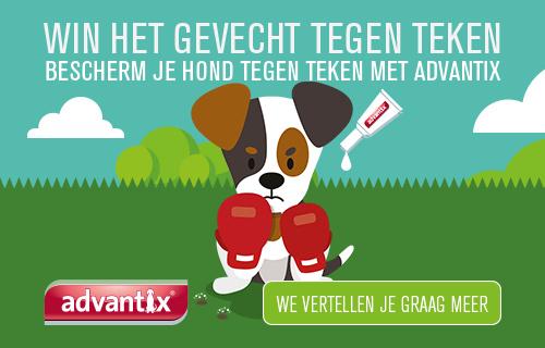Gelukkig is er Advantix voor jouw hond!