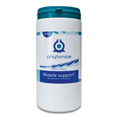 Muscle support Paard