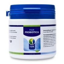 Probiotic Paard