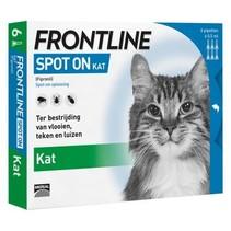 Spot-On Kat