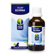 Echina