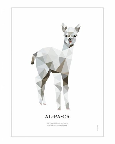 Poster alpaca