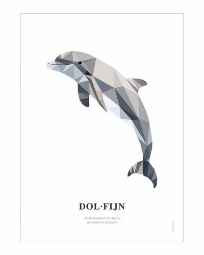 Poster dolfijn