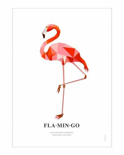 Poster flamingo