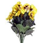bosje viooltjes geel