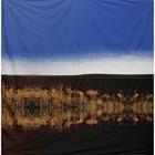 doek riet spiegeling lucht ca. 220 x 220cm