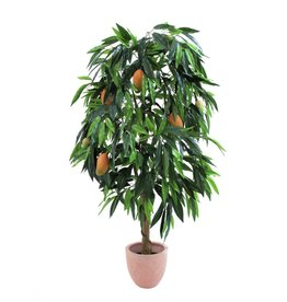 EUROPALMS EUROPALMS Mango tree with fruits, 165cm