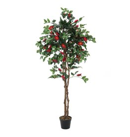 EUROPALMS EUROPALMS Camelia red cemented 180cm
