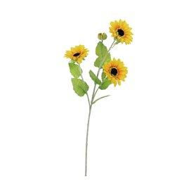 EUROPALMS EUROPALMS Sunflowerbrunch x 3, 70cm