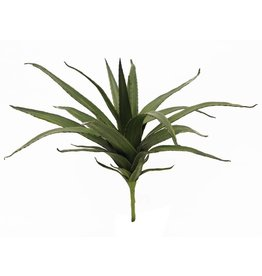 EUROPALMS EUROPALMS Aloe (EVA), green, 50cm