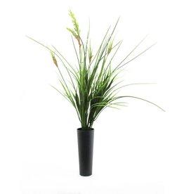 EUROPALMS EUROPALMS Onion grass bush, 66cm