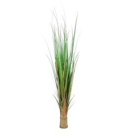 EUROPALMS EUROPALMS Fox grass, 150cm