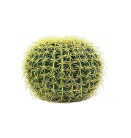 EUROPALMS EUROPALMS Barrel Cactus, 37cm