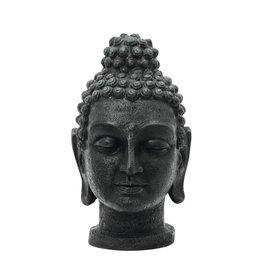 EUROPALMS EUROPALMS Buddhahead, antique-black, 75cm