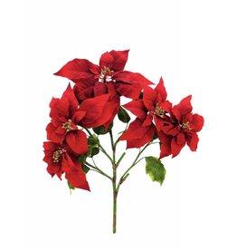 EUROPALMS EUROPALMS Poinsettia bush, red, 60cm