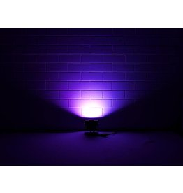 EUROLITE EUROLITE LED IP PAD COB RGB 60W