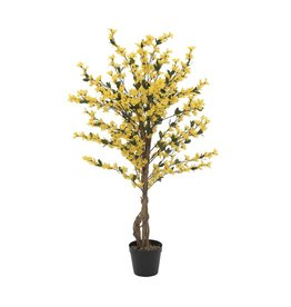 EUROPALMS EUROPALMS Forsythia tree with 4 trunks, yellow, 120 cm
