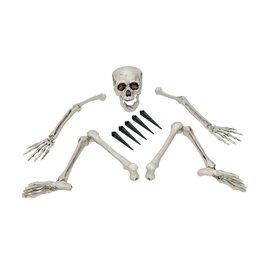 EUROPALMS EUROPALMS Halloween Skeleton, multipart