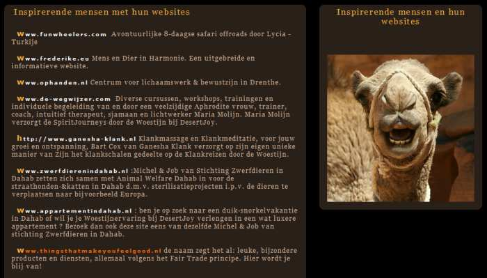 DesertJoy website