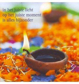 ZintenZ postcard In het juiste licht