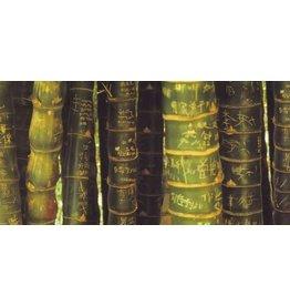 Tushita postcard Bamboo Panorama