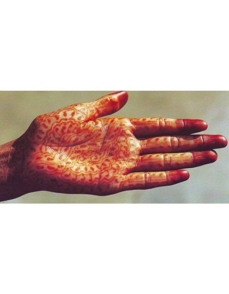 Tushita postkaart Hand Panorama
