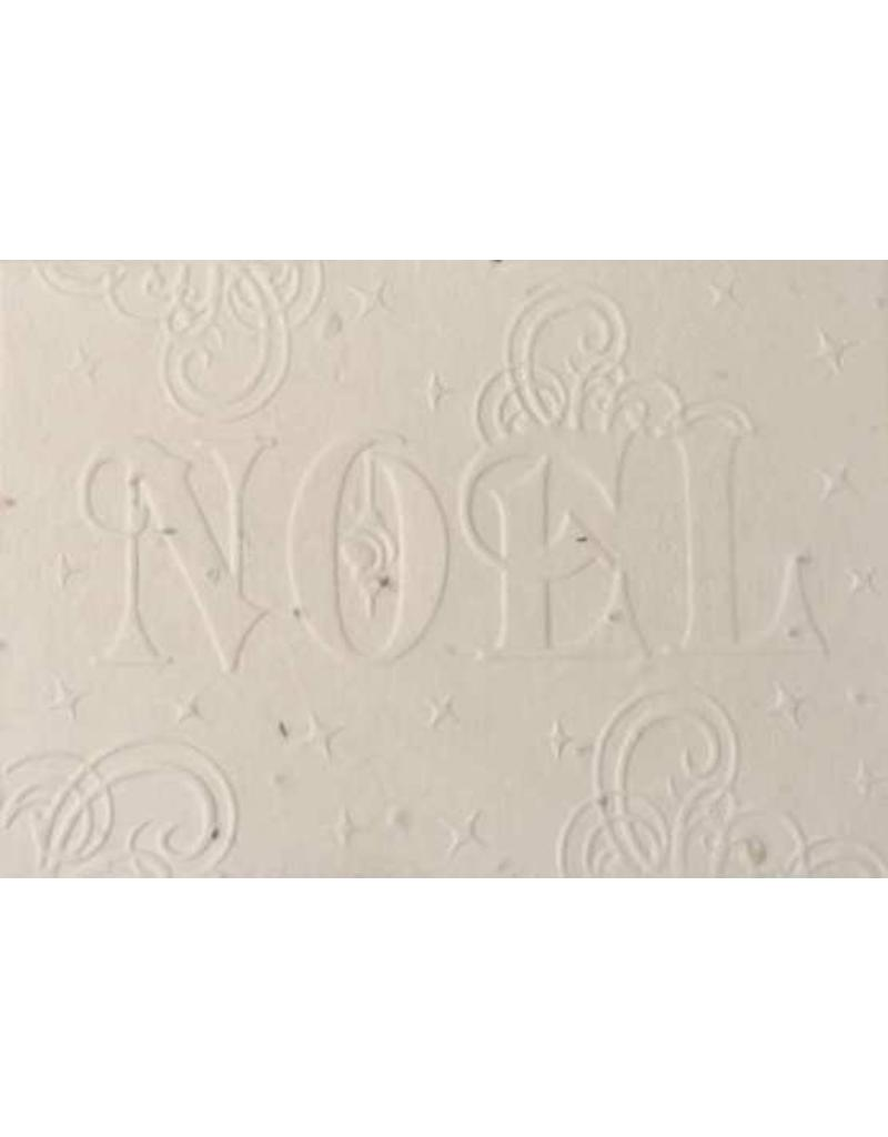 Cotton growing paper christmas card with NOEL