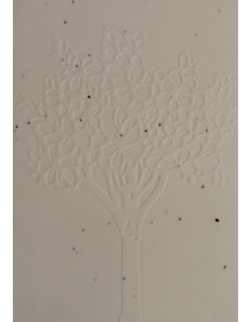 Cotton growing paper postcard with blooming tree