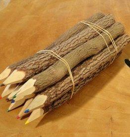 Kanika kleurpotloden set van 10 stuks 17.5 cm