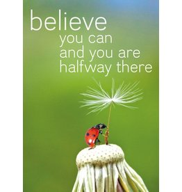 ZintenZ magnet Believe you can