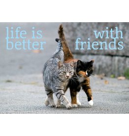 ZintenZ magneet Life is better with friends