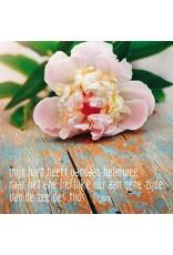 ZintenZ postcard Mijn hart heeft vandaag heimwee