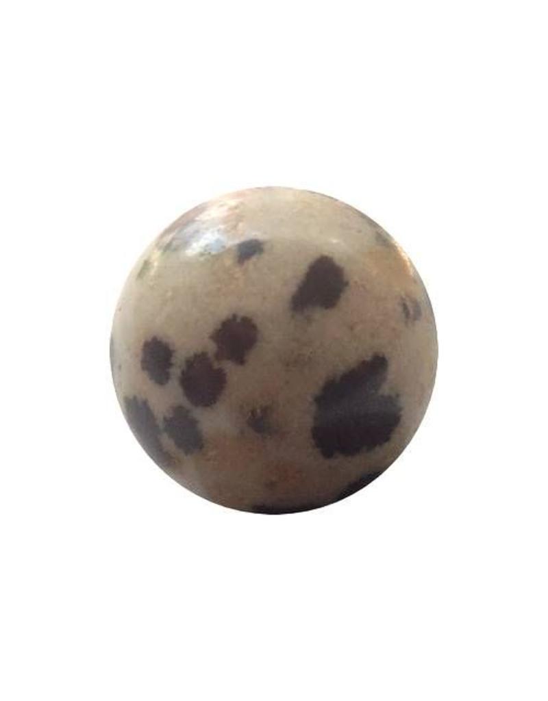 Wisselsteen dalmatiër Jaspis 12 mm