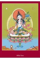 Tibetan Buddhist Art postcard White Tara