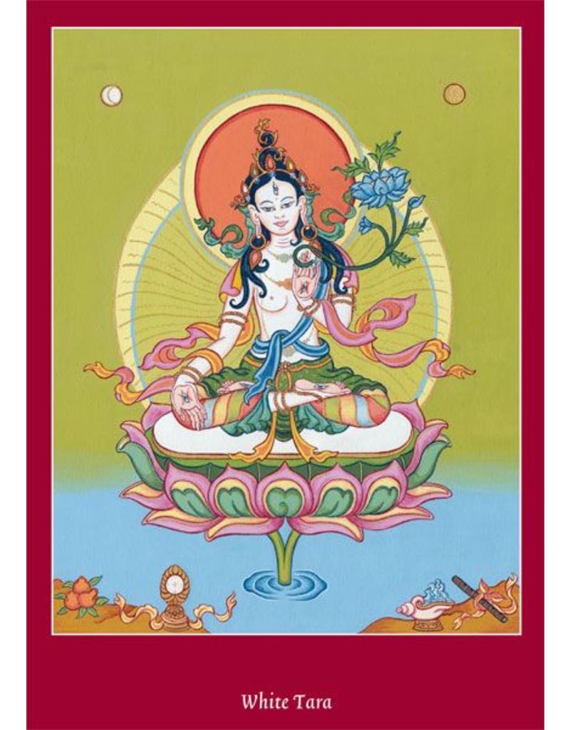 Tibetan Buddhist Art postkaart Witte Tara