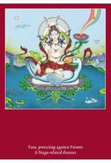 Tibetan Buddhist Art postcard Tara