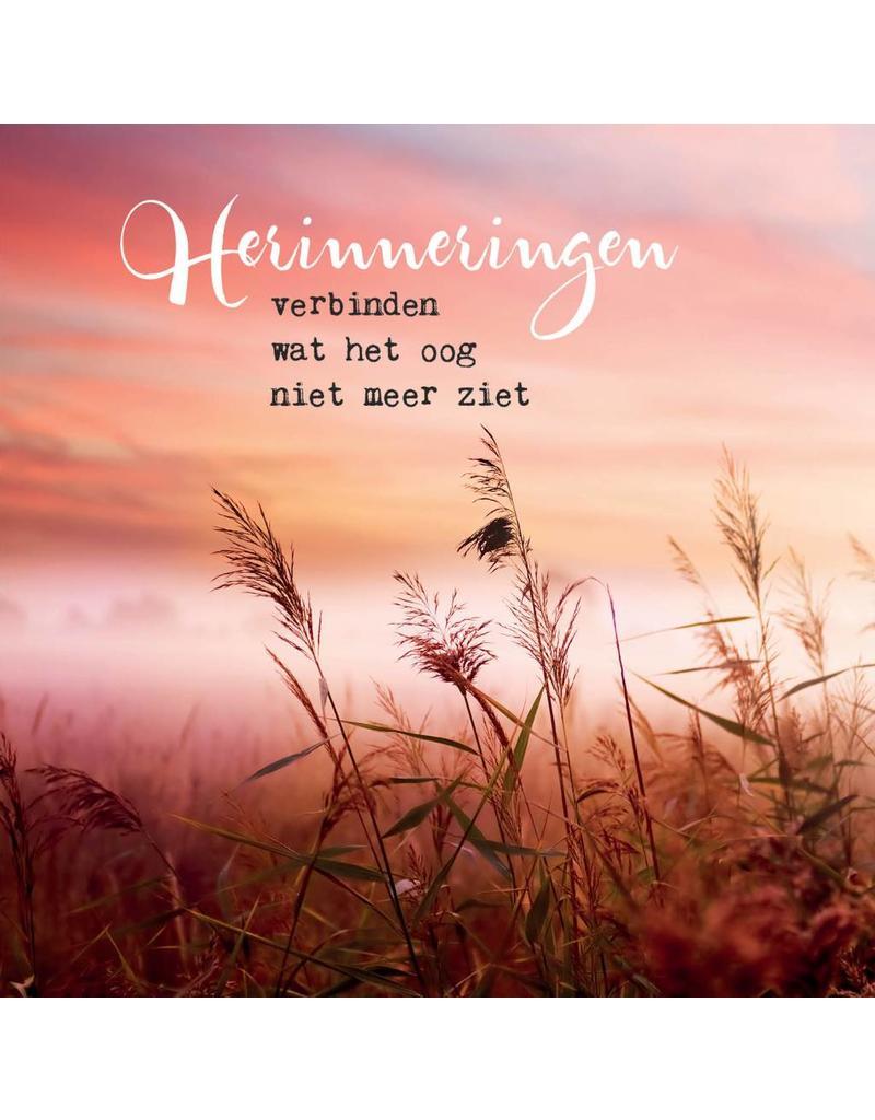 ZintenZ postkaart Herinneringen