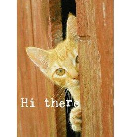 ZintenZ postcard Hi there