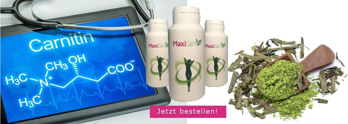 MaxiSlim L-Carnitin, grüner Tee, Artischocke und grüner Kaffee