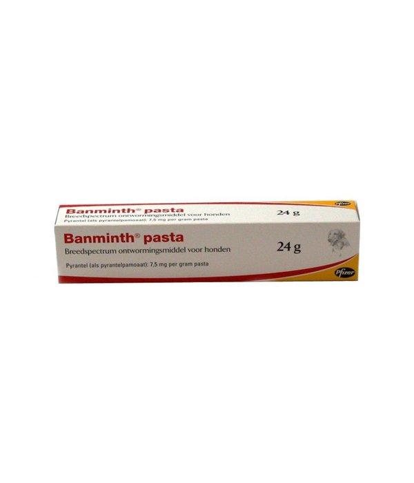 Banminth Paste Hund 24 g