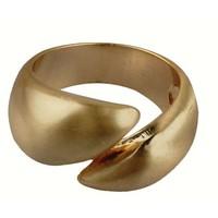 Ring (344402)