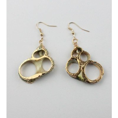 Earring   Shell   Turquoise   Gold