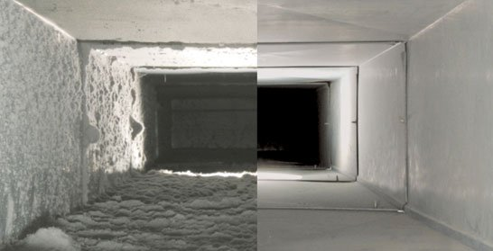 Studies reveal that indoor air may be 70 times more polluted than the air outside.