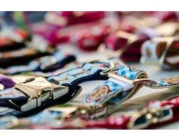 Harnesses & More