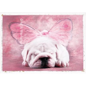 SALE Klappkarte Bulldogge