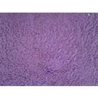 1344-45 violette