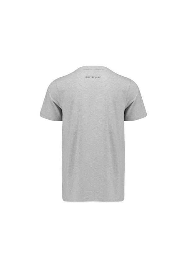 RBR Logo T Shirt grijs 2019 MEN